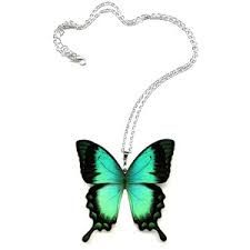Image result for real butterfly jewelry