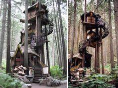 I still dream of tree houses!