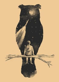 owl negative space