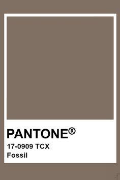 Pantone Fossil Pantone Tcx, Pantone Swatches, Color Swatches, Pantone Colour Palettes, Pantone Color, Colour Pallete, Colour Schemes, Brown Pantone, Pantone Matching System