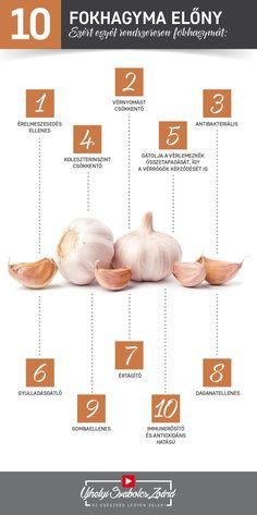 A fokhagymát legalább 5000 éve fogyasztja az emberiség.  Ma a fokhagyma gyógy-élelmiszernek tekinthető, mely biztonságosan alkalmazható, s már tudományosan is bebizonyosodtak kedvező hatásai. A hagymagumóban alliin és alliináz nevű enzim található, de a hagymát megvágva allicin és számtalan szulfid képződik. Tartalmaz még B- és C-vitamint, flavonoidokat, kéntartalmú peptid származékokat is. Add meg rendszeresen a testednek a fokhagymát, és használd ki pozitív hatásait!  Az egészség legyen… Health Remedies, Home Remedies, Forever Aloe, Health Trends, Forever Living Products, Jaba, Garlic, Vitamins, Health Fitness