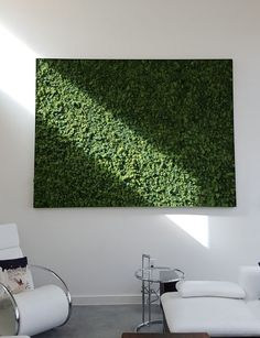 articulture in austin does living walls