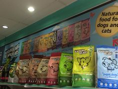 Great @BarkingHeads @MeowingHeads display @ Buddy Ave, Eastwood Centre! #reinbiotech#barkingheads#meowingheads#sgpets#petsg#petsofsingapore#singaporepets#abco#sgdog#dogsg