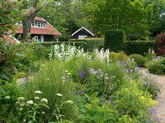 Tea garden of Jacqueline van der Kloet