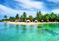 Badian Island Wellness Resort is the only world class hotel and resort situated in a small island at the Southwest Coast of Cebu. Visit us now! Cebu, Philippines Beaches, Philippines Travel, Exotic Beaches, Tropical Beaches, Beach Resorts, Hotels And Resorts, Wellness Resort, Enjoying The Sun