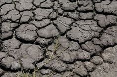 Dried up river bed with the cracked earth and mud Stock Photo