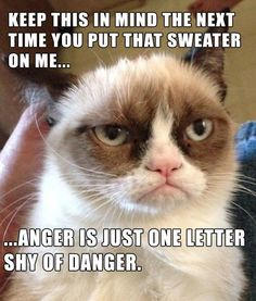 ...anger is just one letter shy of danger.