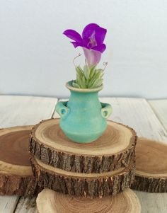 A personal favorite from my Etsy shop https://www.etsy.com/listing/224982161/pinky-pot-miniature-collectible-fine-art