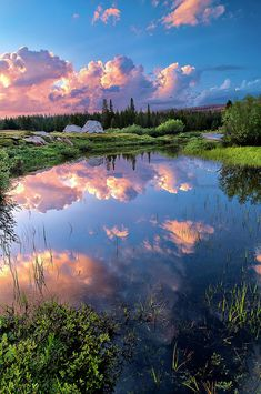 Pond in Tuolumne Meadows, Yosemite National Park, California - wow