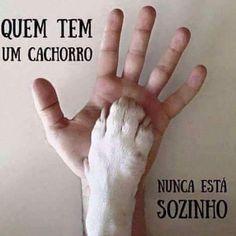 PURA VERDADE!❤️❤️ #cachorro  #amocachorro  #cachorroétudodebom  #cachorrosdobrasil #petmeupet
