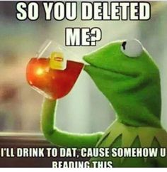 Haha Idk why I like these Kermit Memes so much