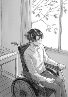 It would be so sad if Levi lost the use of his legs, or if he lost his sight...  NONONONONONO
