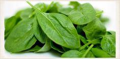 Ensalada de espinacas con frutos del bosque ¡Saludable y nutritiva! | Adelgazar – Bajar de Peso