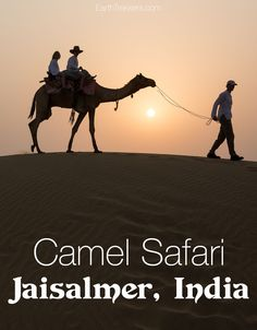 Camel Safari in Jais