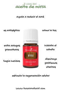 Yl Oils, Doterra Essential Oils, Young Essential Oils, Esential Oils, Essential Oil Storage, Young Living Oils, Melaleuca, Health And Wellness, Tips