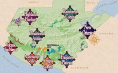Guatemalan Coffees ® 8 Regions