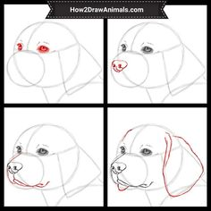 dog drawing How to Draw a Beagle Dog Animal Sketches, Art Drawings Sketches, Easy Drawings, Animal Drawings, Dog Drawing Tutorial, Drawing Tutorials, Drawing Ideas, Beagle Art, Monster Drawing