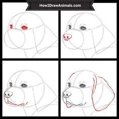 dog drawing How to Draw a Beagle Dog Animal Sketches, Art Drawings Sketches, Animal Drawings, Easy Drawings, Pencil Drawings, Pencil Art, Dog Drawing Tutorial, Drawing Tutorials, Drawing Ideas