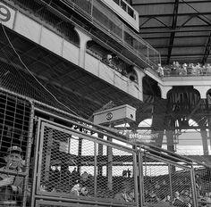 A CBS camera at Ebbets Field, Brooklyn, NY. Image dated April Baseball Park, Cowboys Football, Sports Baseball, New York Stadium, Stadium Tour, Shea Stadium, Yankee Stadium, Brooklyn Image, America's Favorite Pastime
