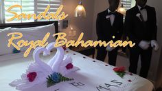 Full review of Sandals Royal Bahamian resort in Nassau. We spent 4 days at the resort exploring all the different room and suite options, dining, entertainment and wedding locations on the property. We show several destination wedding locations and have two different wedding walk ups to give you the brides point of view. Sandals Royal Bahamian has 29 different room categories and we are happy to go over them with you.  #sandalsresorts #SandalsRoyalBahamian #destinationwedding #Bahamas