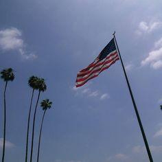 #Repost @jarronmiller  #Cali #california #palm #palmtrees #americanflag