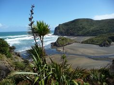 Anawhata regional park-Auckland, New Zealand Nz History, Kiwiana, Auckland, New Zealand, Wanderlust, Park, Regional, Water, Beaches