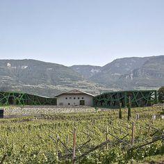 Nella rivista #VilleECasali si parla di #CantinaTramin http://www.villeecasali.com/country-living/storie/cantina-tramin-alta-qualita-ed-ecosostenibilita/ … #winelovers