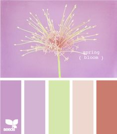 http://www.ourlittlecasita.com/2012/01/nursery-inspiration-color-palettes.html