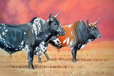 Rupert Hanley - Nguni Cattle Pair 1