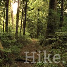 Where do you love to hike in the Pacific Northwest? Check out these Washington state park trails for an ultimate hiking experience: http://adventureawaits.com/category/hiking/.