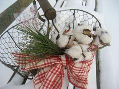 Cotton @ Christmas