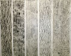 Untitled   2012  graphite, sumi ink  Life size  graphite rubbings of various trees drawn over with sumi ink