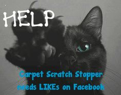 HELP HELP HELP! Save Paws! Carpet Scratch Stopper is trying to help prevent declawing, but we need likes on Facebook! Click pic to go to our facebook!