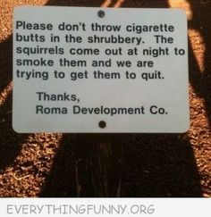funny no cigarette butts on floor trying to get squirrels to quit