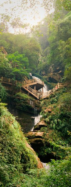 Bifengxia stairs and cascade