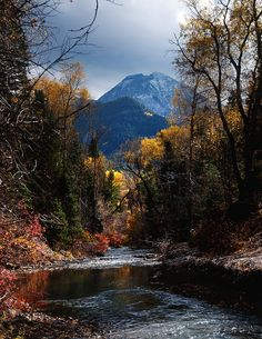 Fall Colors in American Fork Canyon-3527