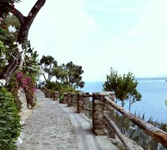Ischia, passeggiata sul mare.