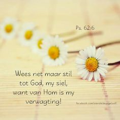 Biblical Verses, Bible Verses, Scriptures, New Journey, Scripture Quotes, Religious Quotes, Afrikaans, Morning Quotes, Christian Quotes