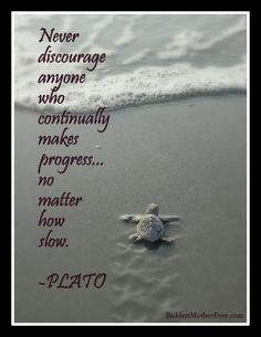 Wordless Wednesday: Plato and the Turtle - Baddest Mother Ever Wall Quotes, Words Quotes, Wise Words, Me Quotes, Motivational Quotes, Inspirational Quotes, Sayings, Family Quotes, Sister Quotes