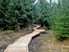Lesy, Garden Bridge, Travel Tips, Sidewalk, Outdoor Structures, World, Zoology, Travel Advice, Side Walkway