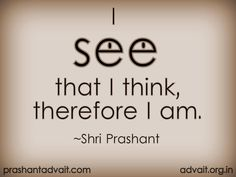 I see that I think, therefore I am.  ~ Shri Prashant  #ShriPrashant #Advait #seeing #thought #WhoAmI #identities #personality #awareness  Read at:- prashantadvait.com Watch at:- youtube.com/c/ShriPrashant Twitter:- @Prashant_Advait Website:- www.advait.org.in