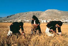therismos Karpathos, Greece Travel, Greek Islands, Past, Journey, Mountains, Places, Greeks, Animals