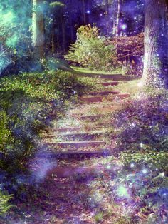 Pathway........lavender-colored glasses...