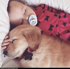 New Puppy Sleeping With The Baby