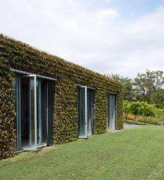 Jardins pelas paredes