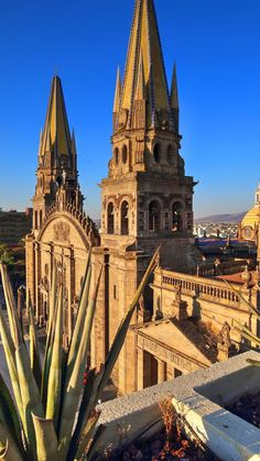 #mexico #holidays #vacation #travel #getaway Sun Holidays, Mexico Holidays, Cancun, Tulum, Mexico Travel, Barcelona Cathedral, Travel Guide, Vacation Travel, Building