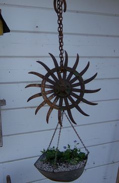 A rusty chain, farm equipment disc, old scale basket, and a trailing plant!