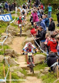 Xc Mountain Bike, Olympic Champion, Outdoor Activities, Olympics, Cycling, Bikers, Bicycles, Bump, Grid