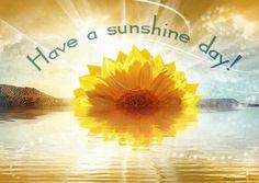 Sunny Days are ahead.