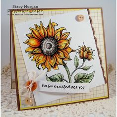 Power Poppy NICE THINGS TO SAY Midsummer Stunner Clear Stamp Set PPJUN1607 zoom image